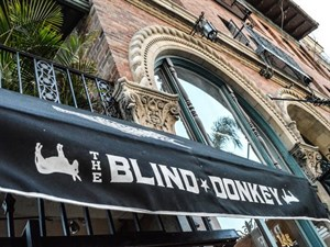 The Blind Donkey