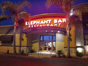 The Elephant Bar